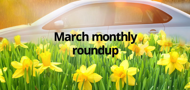 Our March monthly roundup, with Daffodils and spring sunshine.
